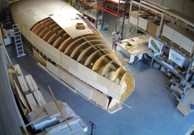 Madera balsa costarricense podría tener potencial